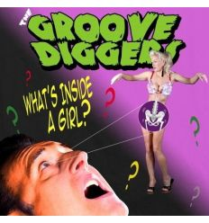The Groove Diggers - What´s Inside A Girl? (Vinyl Maniac - vente de disques en ligne)
