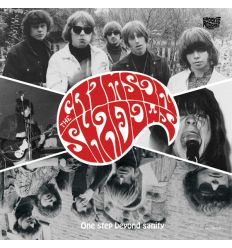 The Crimson Shadows - One Step Beyond Sanity (Vinyl Maniac - record store shop)
