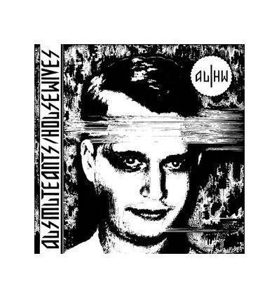 Ausmuteants - Housewives - Total Punk (Vinyl Maniac - record store shop)
